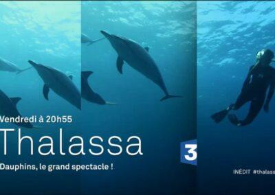THALASSA – France 3